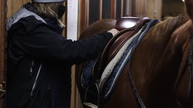 handheld footage of woman adjusting saddle on horse - saddle stock videos & royalty-free footage