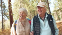 Handheld front view of senior couple walking in a forest