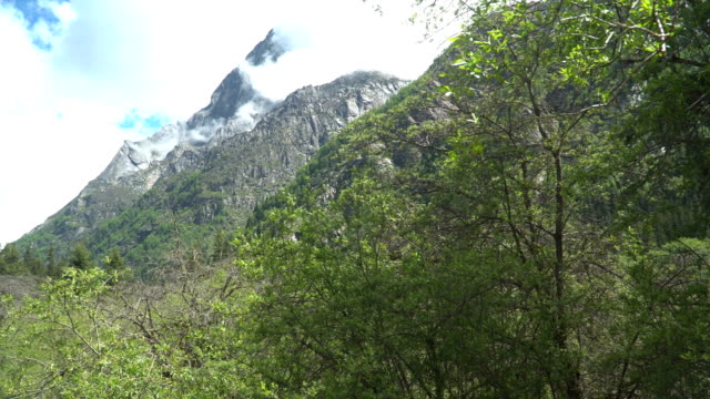 手持ちの低角ビュー:長平郷渓谷または長平渓谷でのトレッキングからシグニアン山、中国 - 四川省点の映像素材/bロール