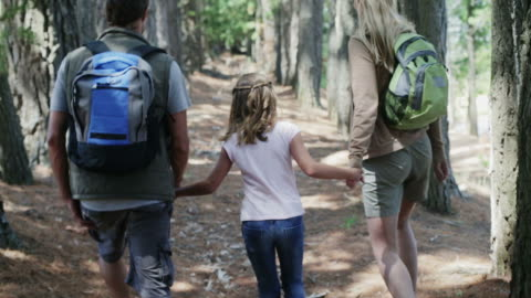 ms handheld of family walking in forest - three people stock videos & royalty-free footage