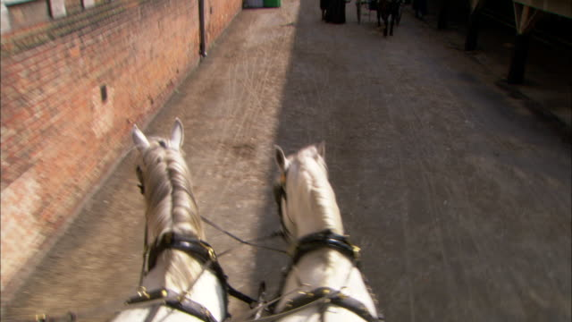 pov hand-held push-in - a boy runs out in front of a horse-drawn carriage in london during the 19th century cholera epidemic. / london, england - 19th century style stock videos and b-roll footage