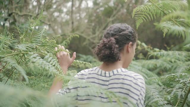 vídeos de stock e filmes b-roll de handheld rear view shot of woman walking amidst plants in forest - territórios ultramarinos franceses