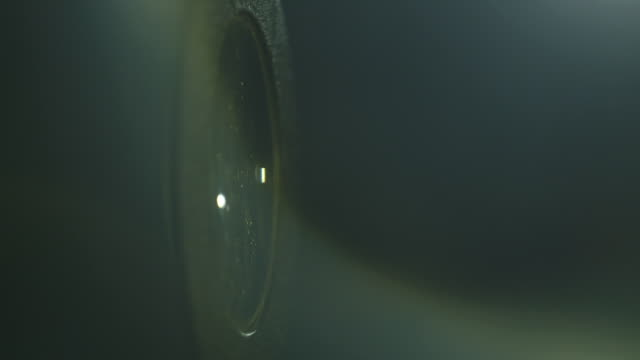 handheld sequence showing motes of dust on and around the surface of an old-fashioned convex glass lens. - magnifying glass stock videos & royalty-free footage