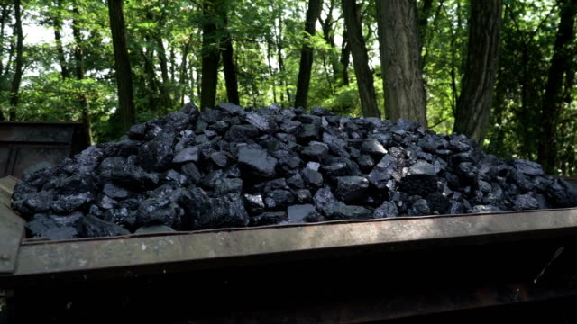 handheld shot: black coal is tranditional energy for trandiitional train in kromlau, germany - lead stock videos & royalty-free footage