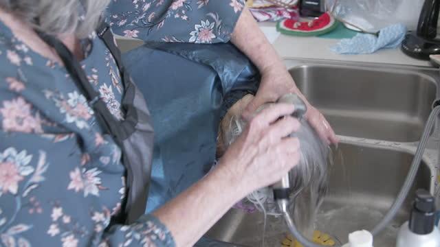 自宅でシャンプーセット中に台所の流しで高齢の白人女性の白髪と白髪を洗うプロの介護者スタイリストのハンドヘルドショット - 髪をブラシでとく点の映像素材/bロール