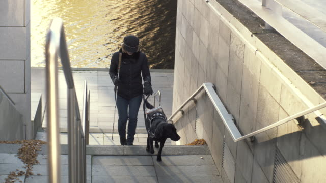 handheld shot of blind woman climbing steps with guide dog in city - visual impairment stock videos & royalty-free footage