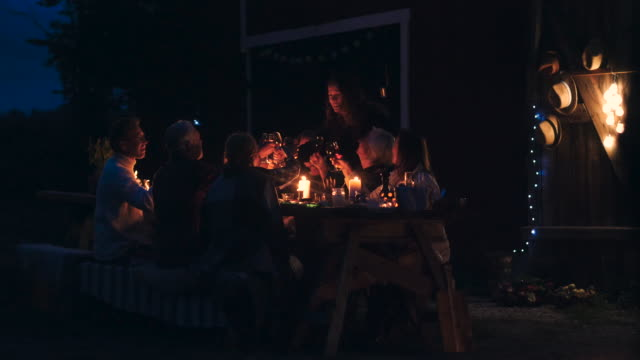 handheld shot of cheerful woman talking while toasting wineglass with friends at dining table during harvest dinner party at backyard - evening meal stock videos and b-roll footage