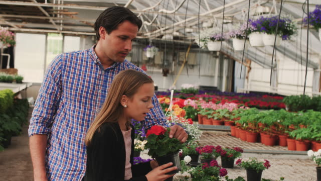 handheld shot of daughter with flowering plant standing by father in garden center - flowering plant stock videos & royalty-free footage