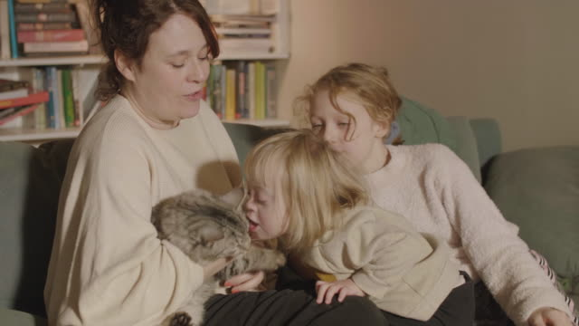 handheld shot of disabled girl kissing cat and family while sitting at home - candid stock videos & royalty-free footage