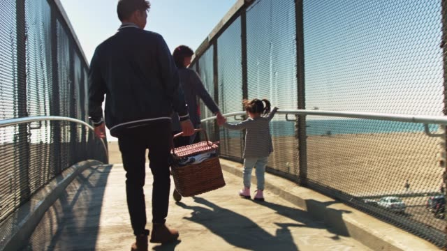 handheld shot of family heading to beach for picnic - picnic basket stock videos and b-roll footage