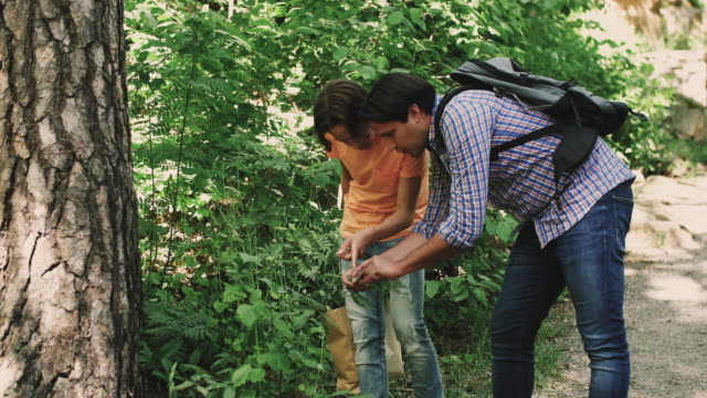 handheld shot of father and son talking about plants while standing in forest - 北欧諸国点の映像素材/bロール