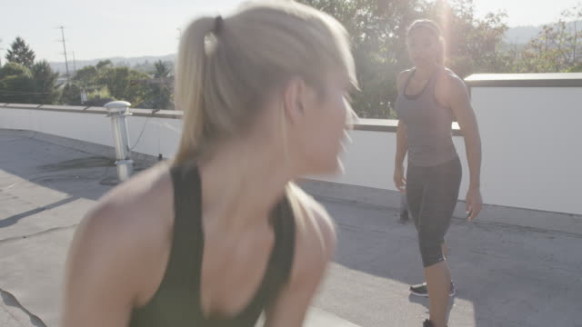 Handheld shot of female athletes exercising with medicine ball on building terrace during sunny day