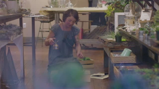 handheld shot of female worker watering plants and arranging on table at store seen through glass - indoors点の映像素材/bロール