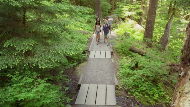 Handheld shot of friends talking while walking on trail at forest