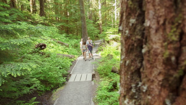 Handheld shot of friends walking on trail amidst plants at mount hood national forest