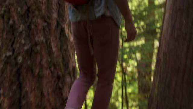 Handheld shot of man walking on tree trunk at mount hood national forest