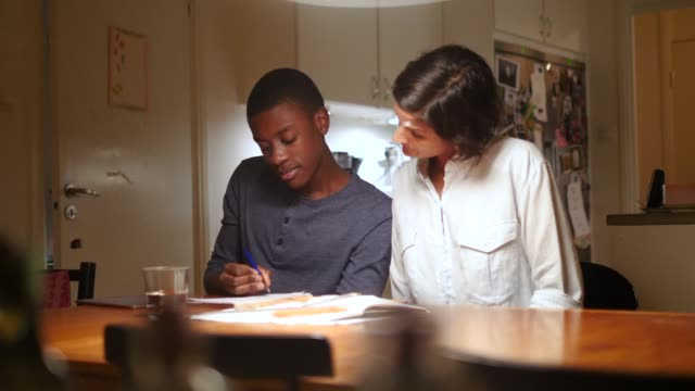 vídeos de stock, filmes e b-roll de handheld shot of mature woman assisting adopted son studying at illuminated table against kitchen - adoção