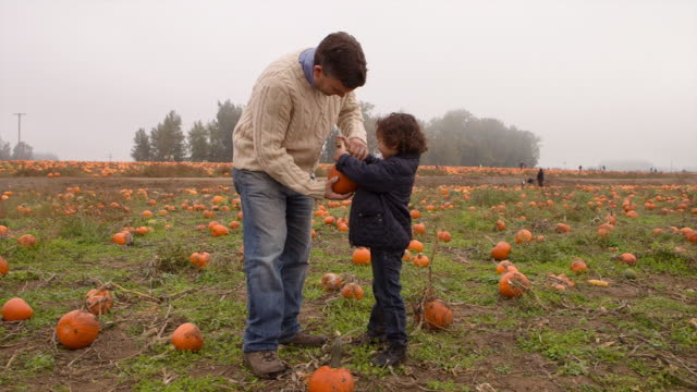 Handheld shot of son showing pumpkin to father