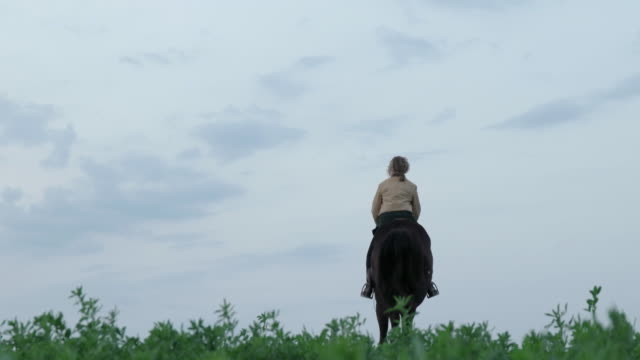 handheld shot of woman riding horse on field against sky - herbivorous stock videos & royalty-free footage
