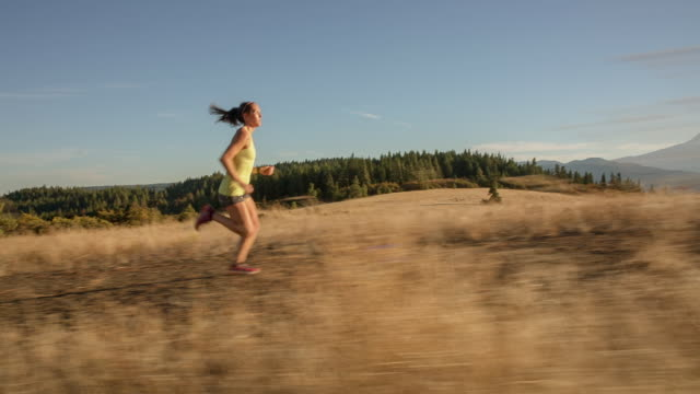 vídeos de stock, filmes e b-roll de handheld shot of young woman running on dirt road against mountains during sunny day - cabelo preso