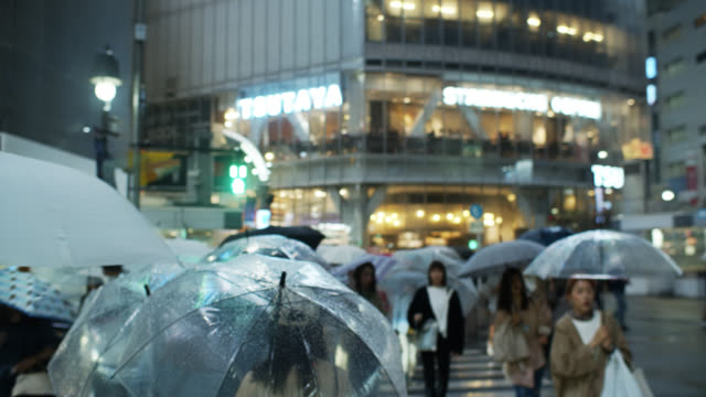 handheld shot walking among pedestrians in shibuya crossing on rainy night - zebra crossing stock videos & royalty-free footage