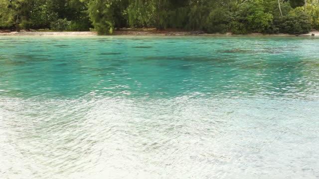 handheld, tropical beach in tahiti - franska polynesien bildbanksvideor och videomaterial från bakom kulisserna