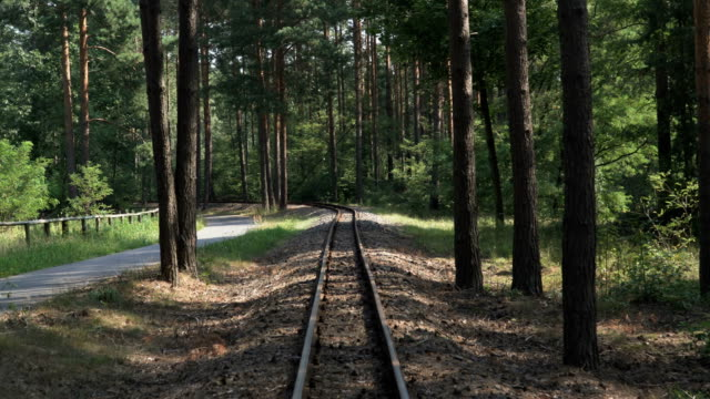 ้handheld view: walking along railway in forest of germany - tramway stock videos & royalty-free footage