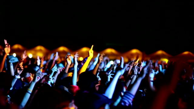 Hands and Heads at Concert