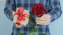 Hands are giving wrapped gift present with tied red bow, moves towards camera, close up. Man is holding little gift box and rose in hands for St. Valentine's Day or Birthday