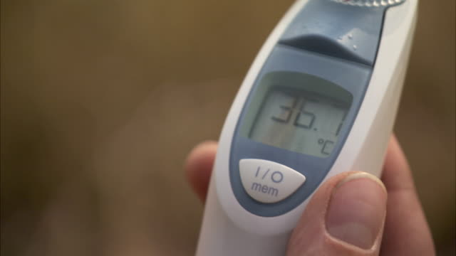 hands hold a digital thermometer. available in hd - thermometer stock videos & royalty-free footage