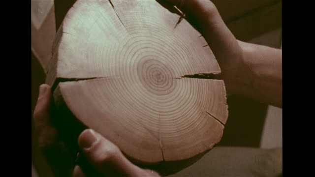 CU Hands holding cross section of tree annual growth rings MS Man w/ pickaxe examining small rock MS Scientists in Byrd Station Antarctica helping...