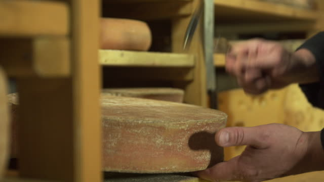 CU hands of cheese maker checking cheese in maturing cellar by first using a little hammer to feel for cavities then taking a sample and checking its consistency