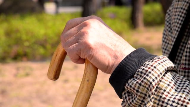 hands of old man with a cane / south korea - stick plant part stock videos & royalty-free footage