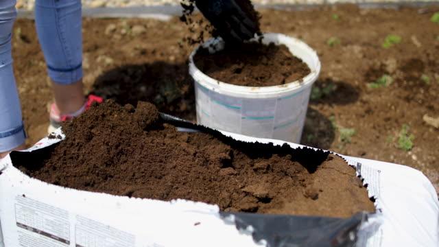 hände eines arbeiters, der kompost für den einsatz vorbereitet - gartenhandschuh stock-videos und b-roll-filmmaterial