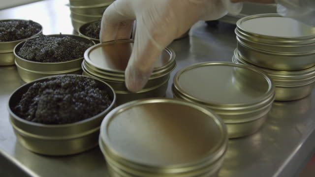 ECU hands of workers putting lids on tins of freshly produced caviar, RED R3D 4K,4KMSTR