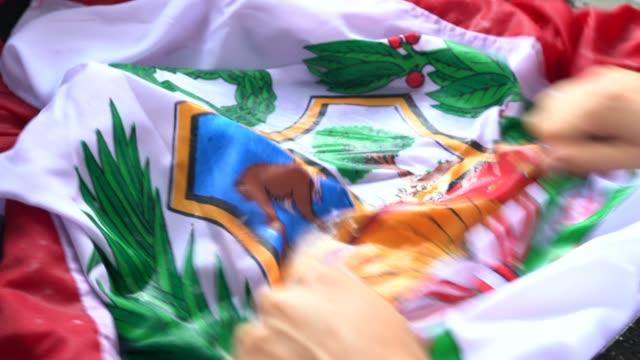 stockvideo's en b-roll-footage met handen wassen peruaanse vlag - verandering peru/corruptie concept - peruaanse etniciteit