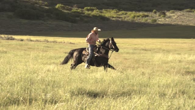 handsome young cowboy running on horseback - handsome people stock videos & royalty-free footage