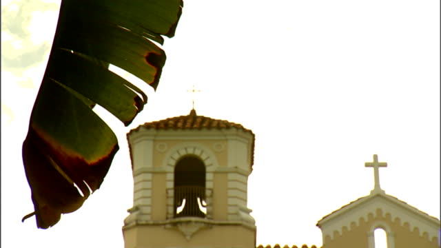hanging banana plant leaf, bell tower & steeple w/ christian cross on top of catedral dulce nombre de jesus . religion, religious, catholic,... - steeple stock videos & royalty-free footage