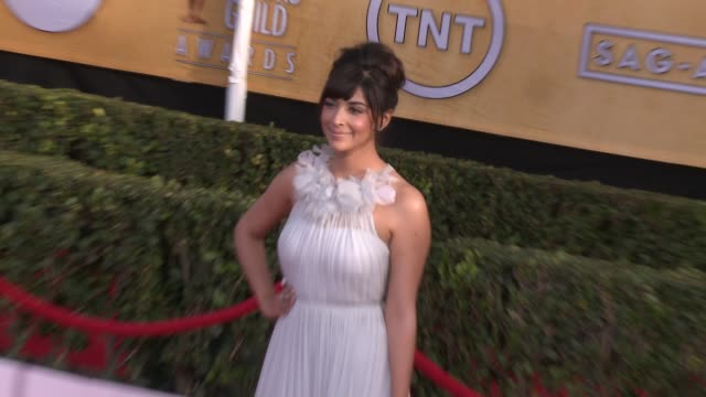 hannah simone at 20th annual screen actors guild awards - arrivals at the shrine auditorium on in los angeles, california. - shrine auditorium stock videos & royalty-free footage