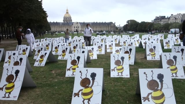"""happening of """"577 bees"""", to represent the number of members of the national assembly, is installed on the esplanade des invalides to try to convince... - invertebrate stock videos & royalty-free footage"""