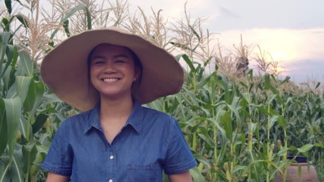 glad och stolt kvinna bonde leende i grödan under solnedgången i thailand - bonde jordbruksyrke bildbanksvideor och videomaterial från bakom kulisserna
