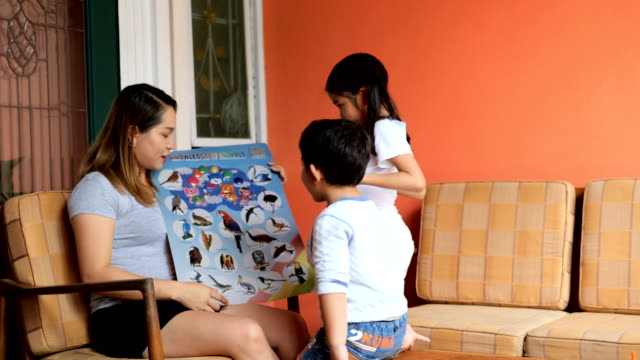 vídeos de stock e filmes b-roll de happy asian family learning new words by boards book. - edifício de infantário