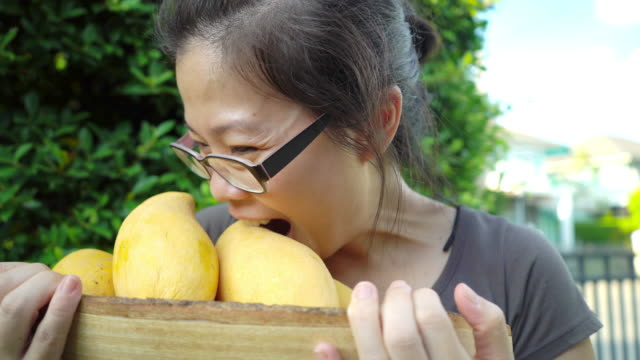 happy asian woman holding a wooden box with mango fruits against green background. - mango stock videos & royalty-free footage
