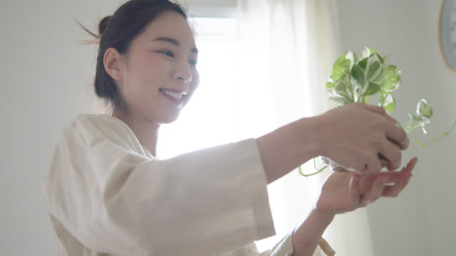happy asian woman planting in her bedroom. - pot plant stock videos & royalty-free footage