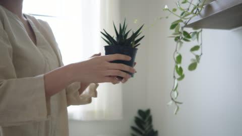 彼女の寝室に植える幸せなアジアの女性。 - ハイチ点の映像素材/bロール