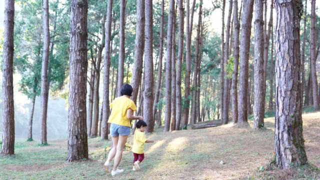 happy baby boy and mother walking in forest - 2 3 years stock videos & royalty-free footage