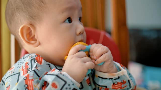 glad pojke äter vattenmelon - 6 11 månader bildbanksvideor och videomaterial från bakom kulisserna