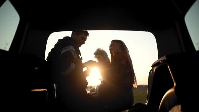vídeos de stock e filmes b-roll de happy, beautiful, young couple hugging and playing with their dog while sitting in car trunk - piquenique
