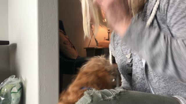 vídeos y material grabado en eventos de stock de feliz rubia madura mujer activa y contenido en casa con cachorro - 50 54 años