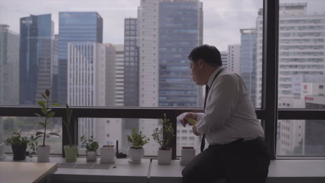 happy boss watering potted plant at office - 水撒き点の映像素材/bロール